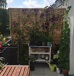 Bambus Balkon Sichtschutz : ideen balkon sichtschutz ~ Eleganceandgraceweddings.com Haus und Dekorationen