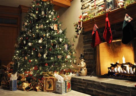Best Christmas Trees  Christmas Day 25