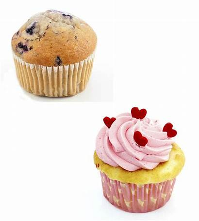 Muffin Cupcake Difference Between Different