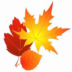 Free Fall Leaf Clip Art - Cliparts.co