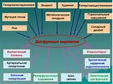 Лекарства от диабета 1 типа форметин