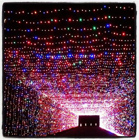 texas a m christmas lights 10 best images about prairie lights grand prairie texas