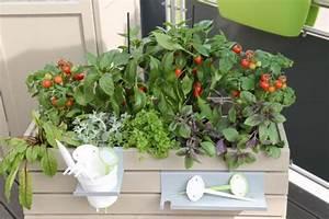 Hochbeet Mit Stauraum : hochbeet f r den balkon aufbauen und bepflanzen mein sch ner garten ~ Yasmunasinghe.com Haus und Dekorationen