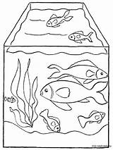 Aquarium Coloring Pages Fish Drawing Printable Getdrawings Sea Recommended Mycoloring sketch template