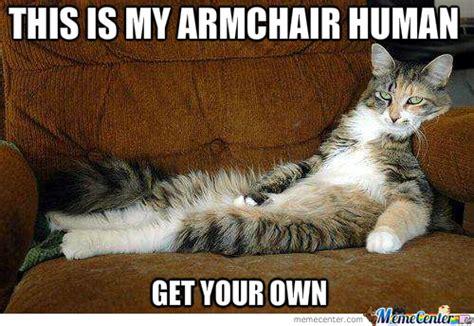 Mean Kitty Meme - mean cat by cer993 meme center