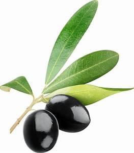 Black olives PNG - PNG image with transparent background