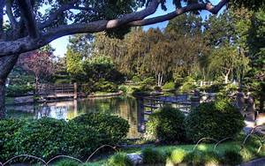 Hdr, Landscapes, Japanese, Pond, Garden, Park, Flowers, Trees, Reflection, Wallpapers, Hd