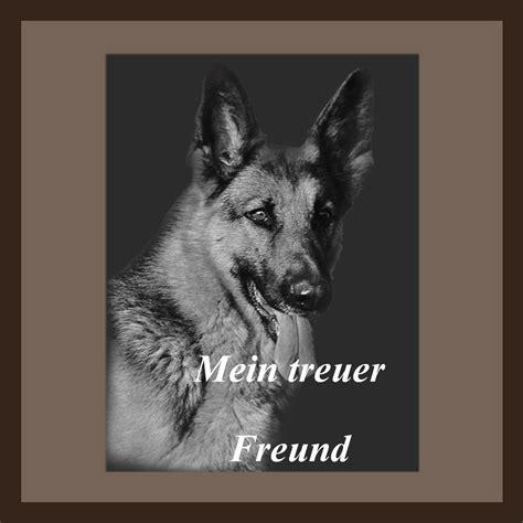 Tierbilder Schwarz Weiß by Tierbild Rechteck Sw Grabbild Porzellanbild Die Anderen