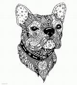 Coloring Animal Pages Detailed Adults Printable Complex Adult Animals Colouring Incredible Sheets Intricate Dog Easy Axialentertainment Face sketch template