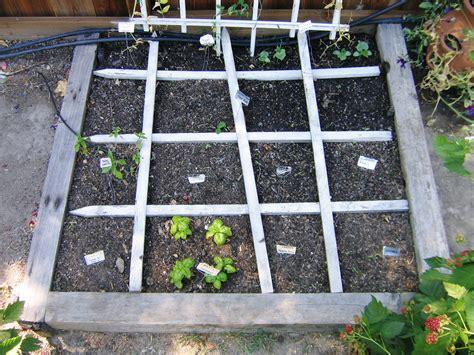 Garden Square Foot Gardening