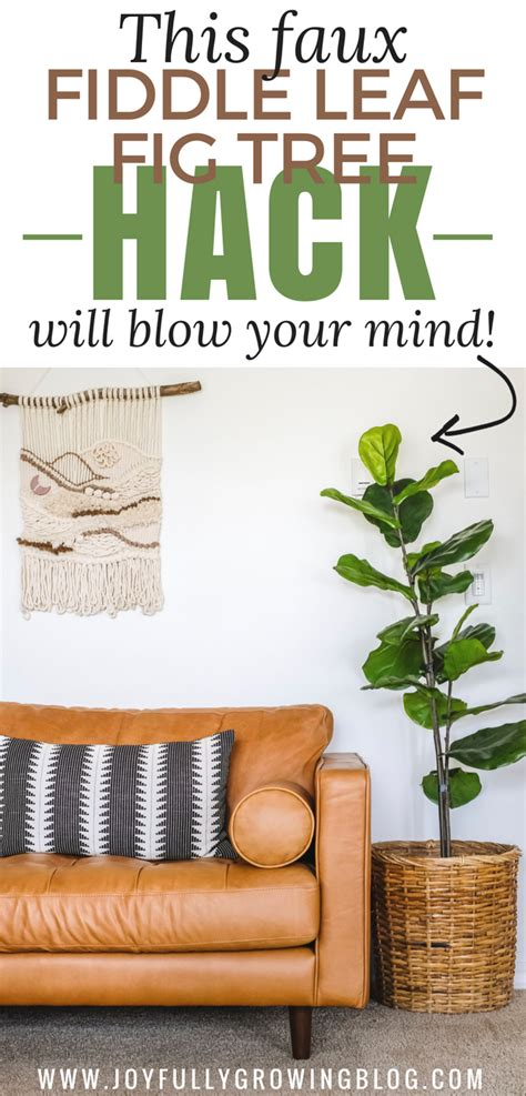 easy fiddle leaf fig tree hack home decor cheap home