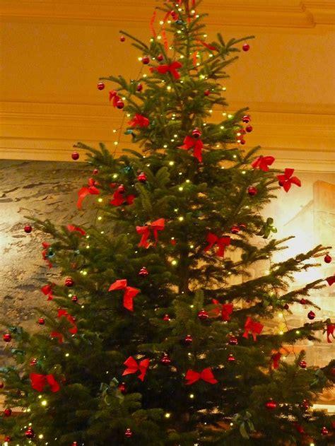 foto der weihnachtsbaum mit den schleifen geo