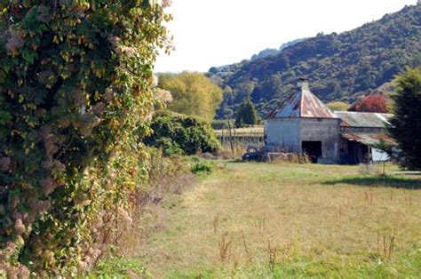 wild hops  kiln nelson places te ara encyclopedia   zealand