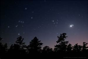 StarCluster Orion's Belt - Pics about space