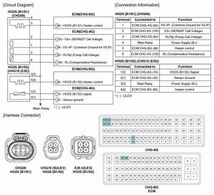 Hyundai Sonata  Heated Oxygen Sensor  Ho2s   Schematic Diagrams - Engine Control System
