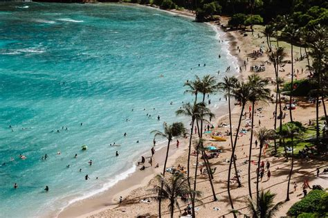 travel  hawaii hawaii guided  contiki