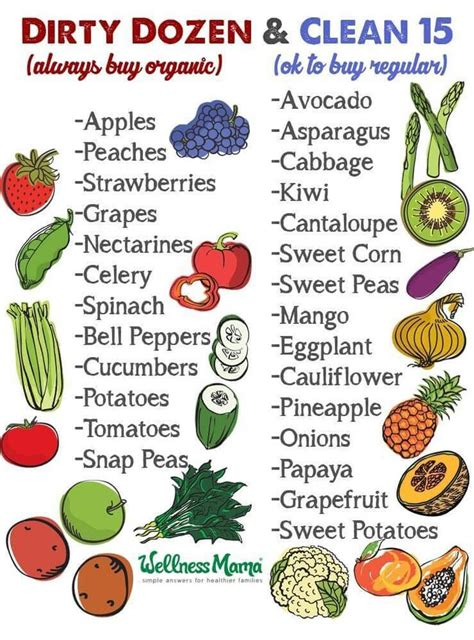 how to wash vegetables 400 best ideas about wellness mama natural home on pinterest homemade sodas and health