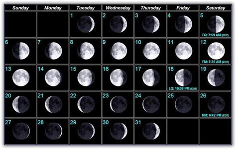 moon phases bait  tackle pine island