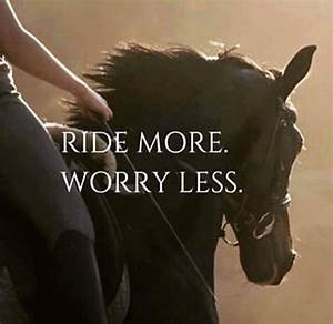 734 best images... Horse And Country Quotes
