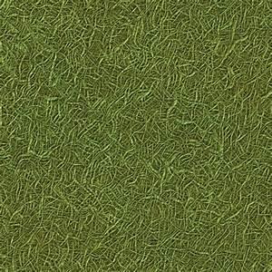 Grass (Texture)