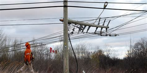 wind storm knocks  power  thousands  durham sparks