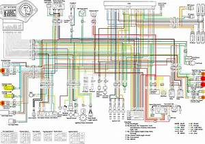 Wiring Diagram Is Wrong  Or Is My Harness The Issue  - Cbr Forum
