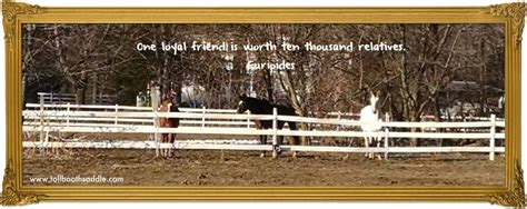 horse quotes loyal relatives worth