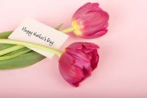 Happy Mother's Day! And Month! And Year!   Lam, Nicholas ...