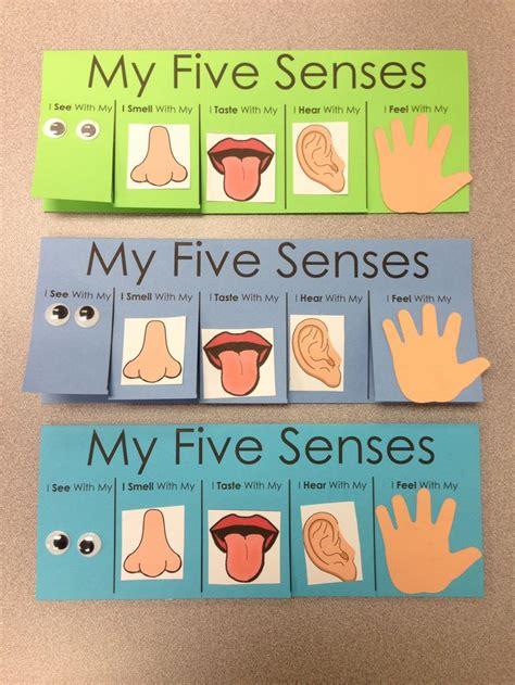 senses activities for preschoolers best 25 5 senses craft ideas on 5
