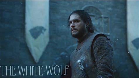 jon snow  white wolf  king   north