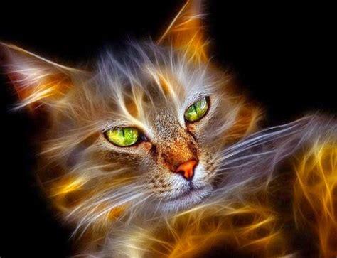 gambar wallpaper binatang lucu keren digital cat art