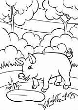 Pig Coloring Pages Animals категории все раскраски из sketch template