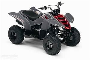 Quad 50cc Homologu U00e9 Yamaha  Quad Raptor 125 Pas Cher  Quad