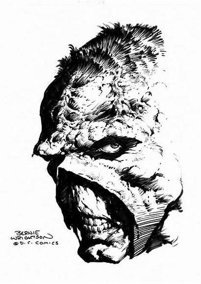 Bernie Wrightson Swamp Thing Macabre Berni Ink