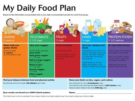 choose my plate daily food plan worksheet foodfash co
