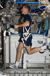 Keeping fit in space a real workout for NASA human ...