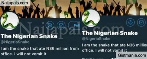 """""""mystery Snake Swallows N36m Cash In Jamb Office"""""""