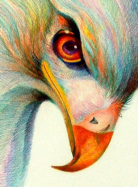raptor eye   decade colored pencil  vellum paper