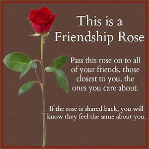 Information About Rose Pictures With Friendship Quotes In Tamil