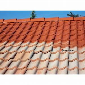 Peinture Pour Toiture : peinture etanche pour toiture bande etancheite brico depot ~ Melissatoandfro.com Idées de Décoration