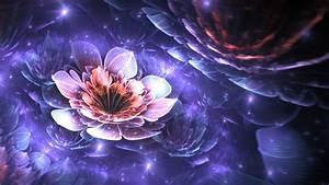 Fractal, Apophysis, Flowers, Digital, Art, 3d, Fractal, Flowers, Abstract, Wallpapers, Hd, Desktop