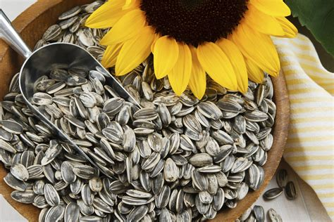 How Many Calories Are in One Tablespoon of Sunflower Seeds images