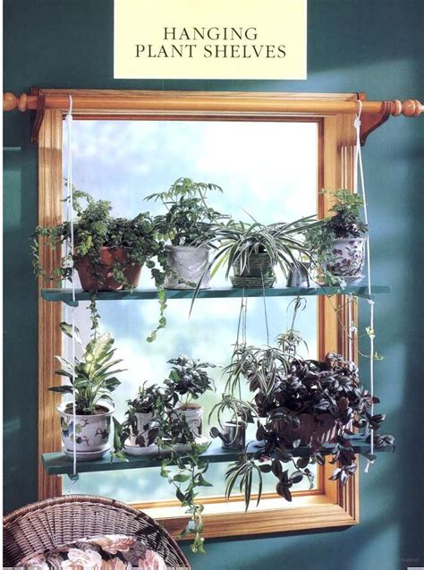 House Plants For Kitchen Window by More Creative Window Treatments Complete Step By Step