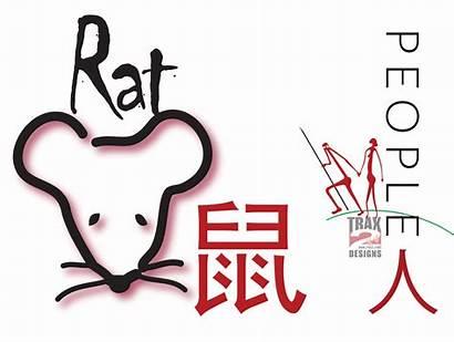 Zodiac Chinese Signs Animal Astrology Animation Calendar