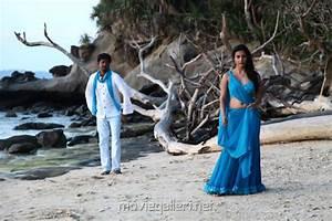 Picture 436398 | Sivakarthikeyan, Priya Anand in Ethir ...