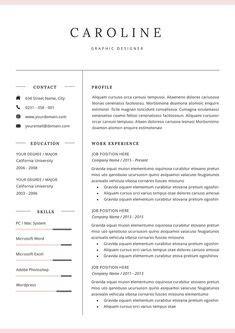 Resume Template Windows 8 by Windows 8 Resume Template Free Resume Template 8