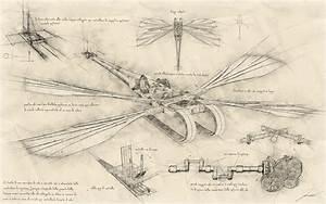 Oc  My Flying Machine Illustrations  U00e0 La Da Vinci   Aviation