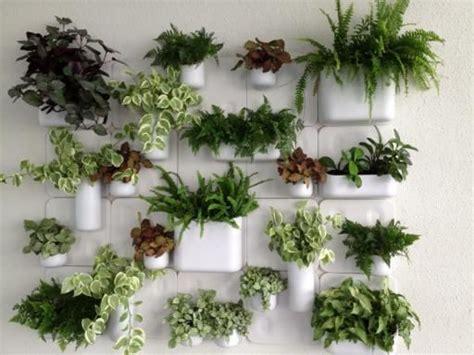 Urbio.com, New Inside Garden Wall, And Or Desk Wall