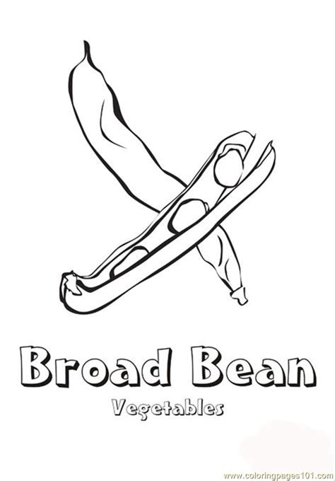 broad bean coloring page  vegetables coloring pages