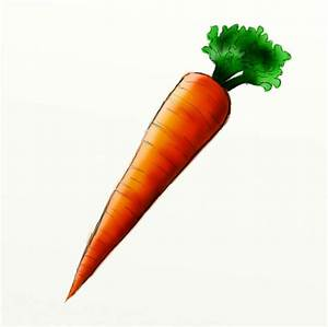 How to Draw a Carrot | FeltMagnet  Carrot